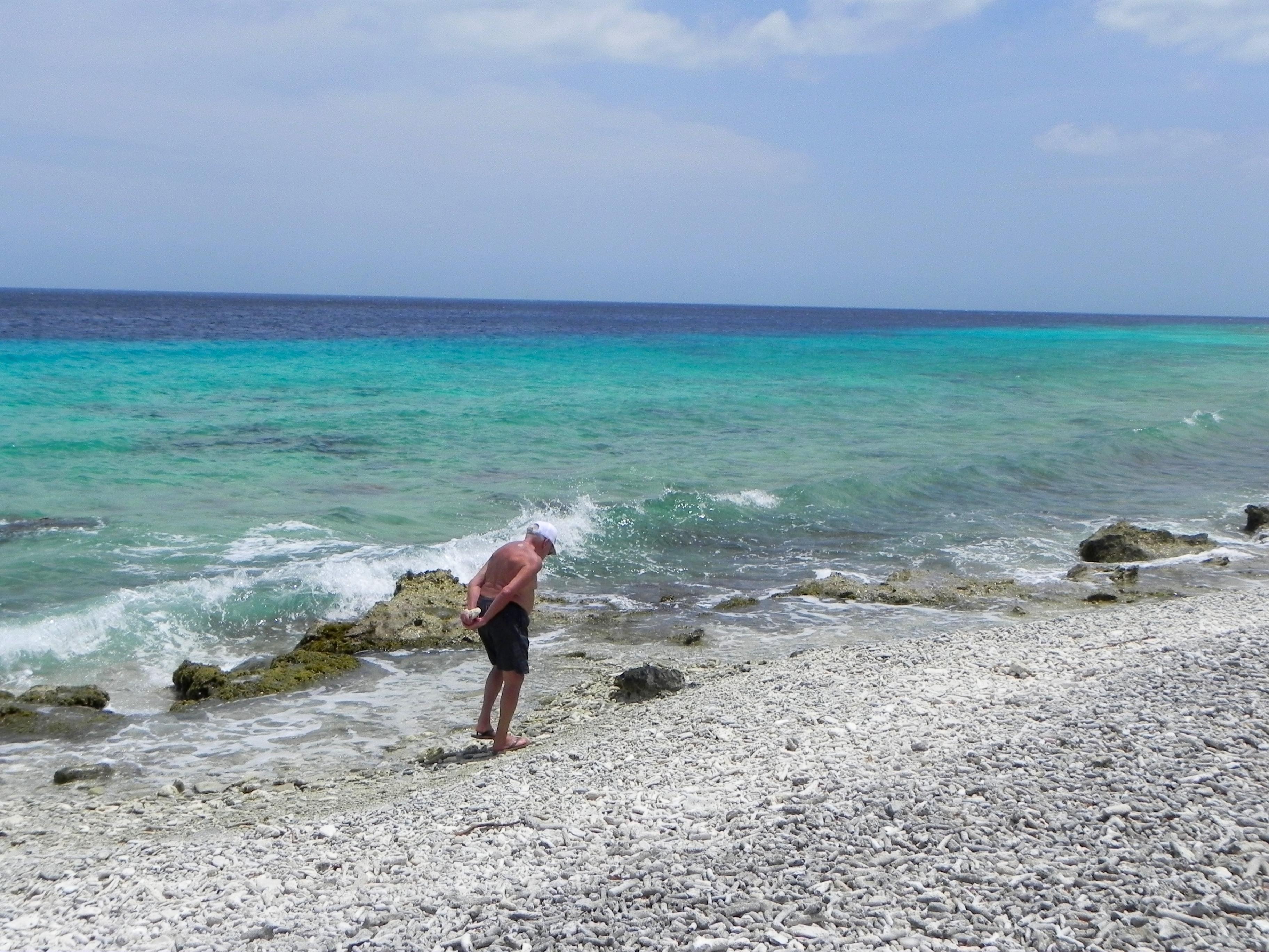 beira praia coberta por corais