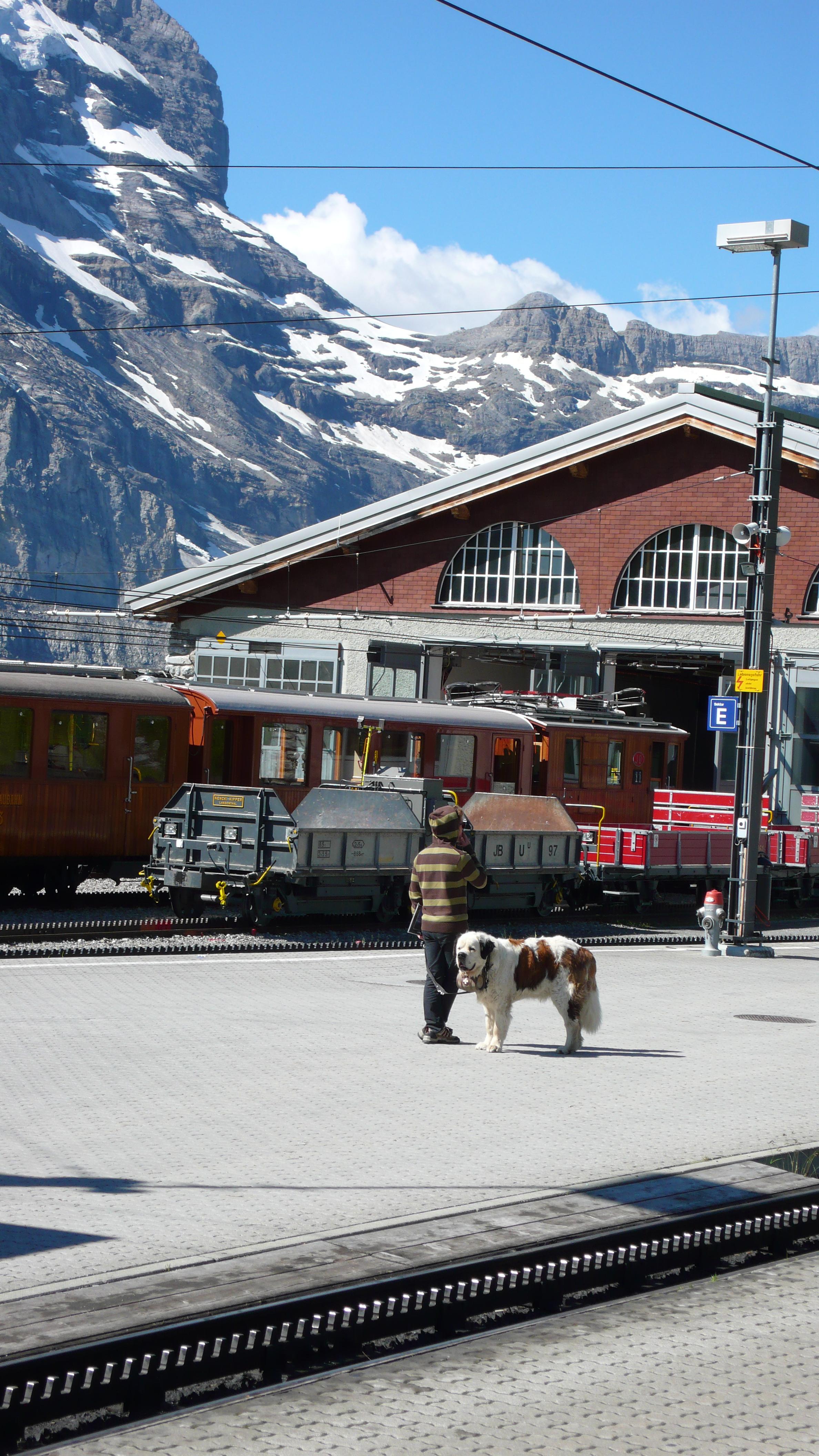 Descida do Jungfraujoch
