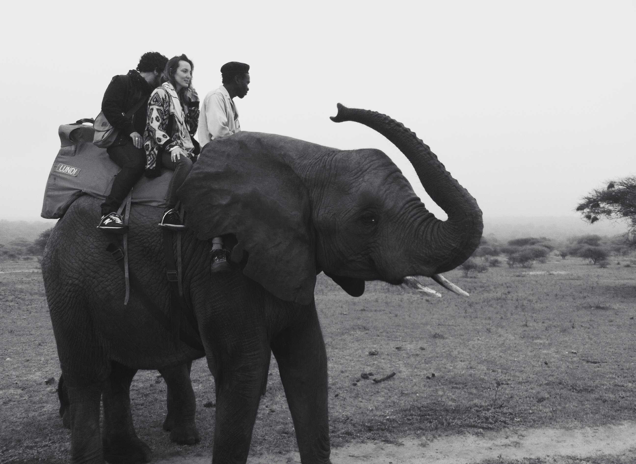 CANDI_AFRICADOSUL