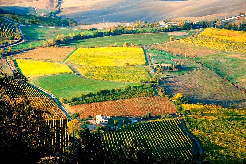 Crédito foto: http://www.bestourism.com/items/di/475?title=Montalcino-Wine-Tour&b=71