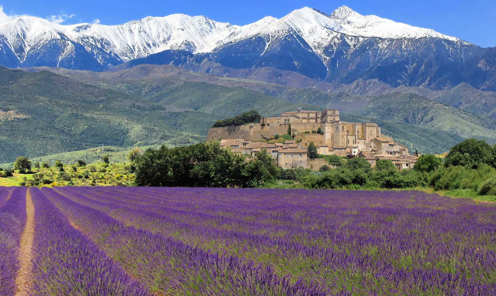 Crédito foto: https://www.winerist.com/tours/provence/private-full-day-wine-tour-in-provence
