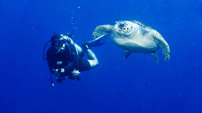 Crédito foto: http://exame.abril.com.br/estilo-de-vida/noticias/6-destinos-incriveis-para-quem-gosta-de-mergulhar#3