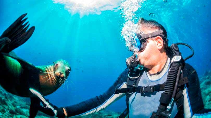 Crédito foto: http://exame.abril.com.br/estilo-de-vida/noticias/6-destinos-incriveis-para-quem-gosta-de-mergulhar#5