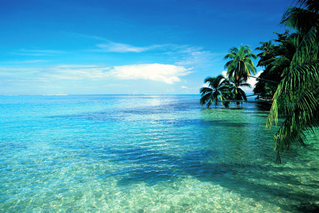 Crédito foto: http://www.huffingtonpost.com/entry/moorea-french-polynesia-stunning-island_56313513e4b0c66bae5acf45?utm_hp_ref=travel&ir=Travel&section=travel