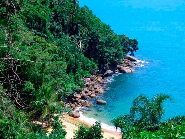 Crédito foto: http://tudosobreubatuba.com.br/praia.php?id=20&nome=Praia%20do%20Cedro