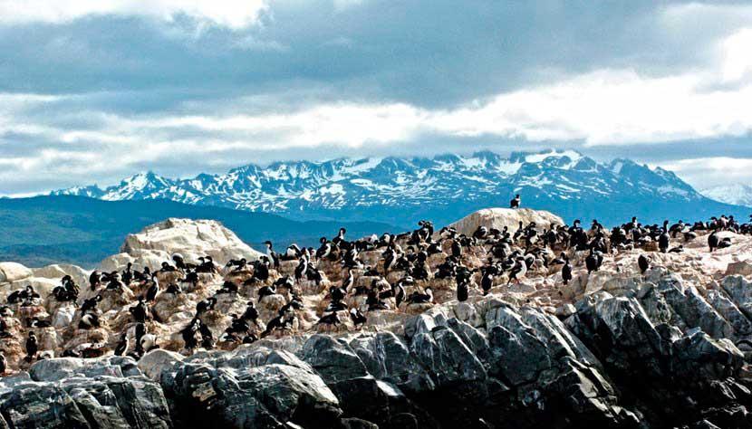 Ushuaia/ Crédito foto: http://www.partiuviagens.com.br/destinos/argentina/ushuaia.aspx