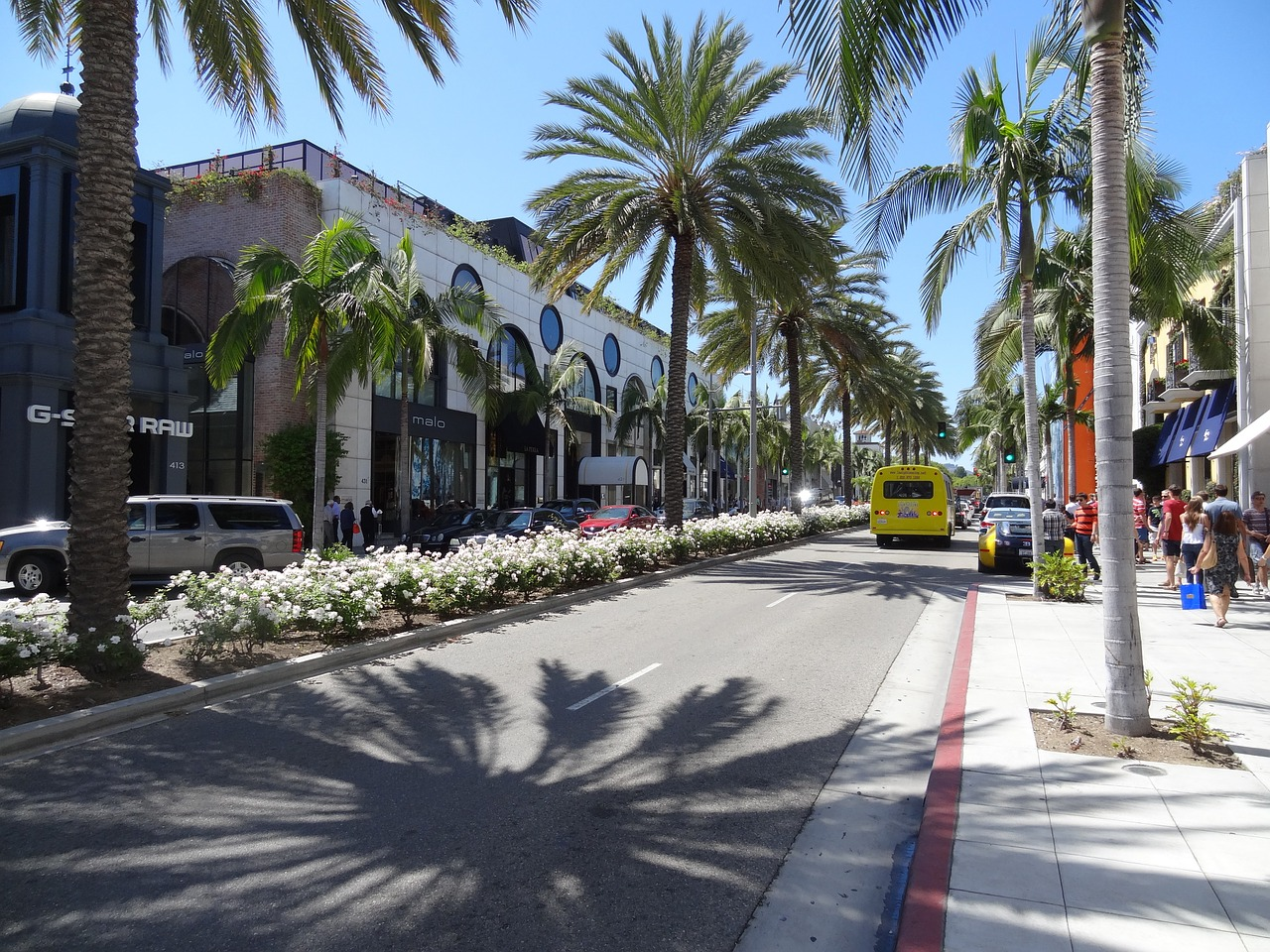 rodeo-drive-686789_1280
