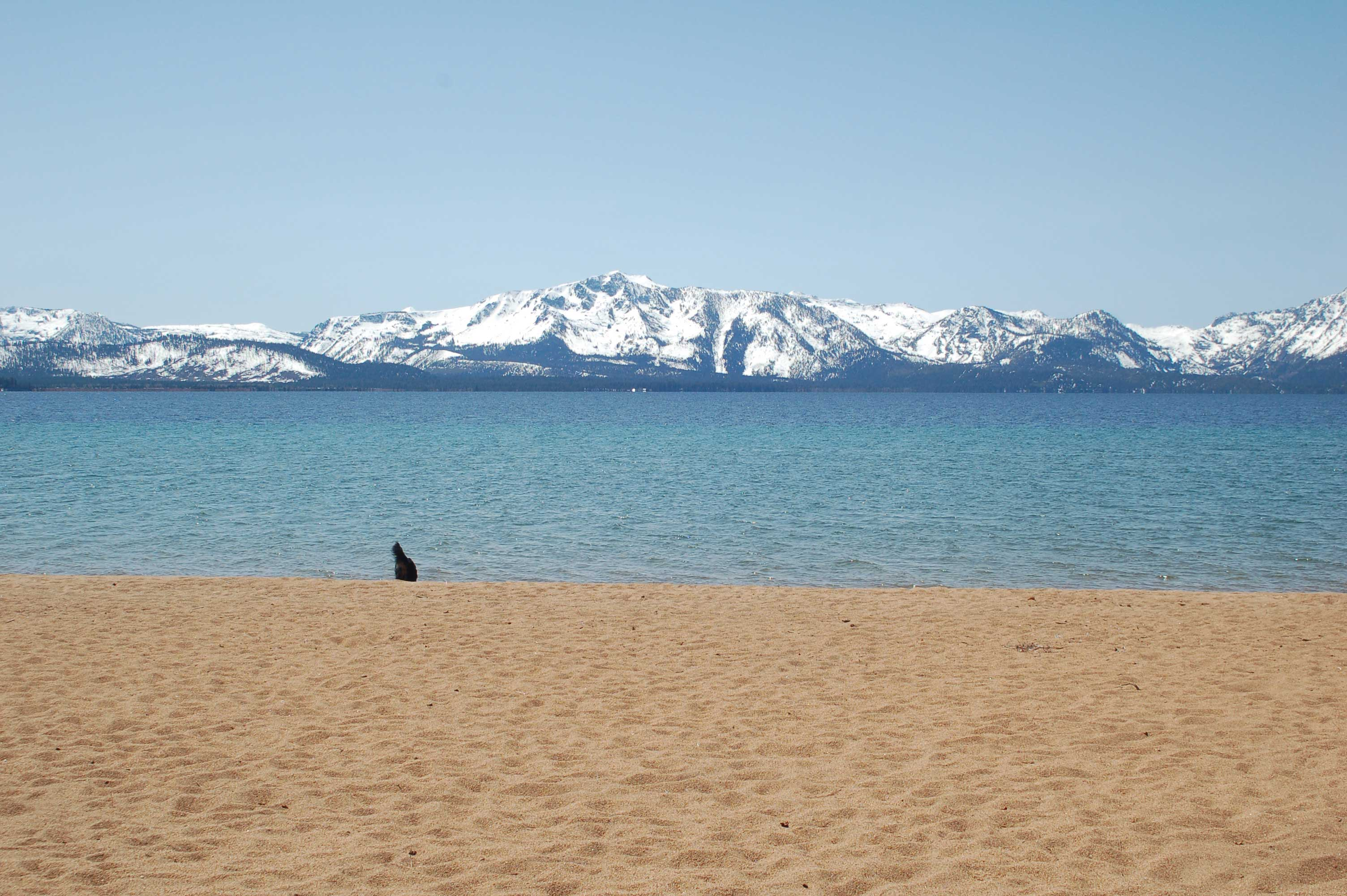 Nevada Beach/ Crédito foto: https://laketahoesplashyweddings.wordpress.com/2012/04/07/nevada-beach-is-a-favorite-site-for-lake-tahoe-beach-weddings/