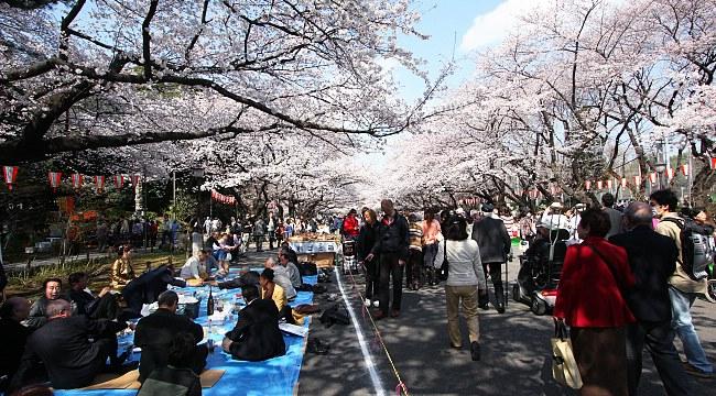 Crédito foto: divulgação Ueno Park