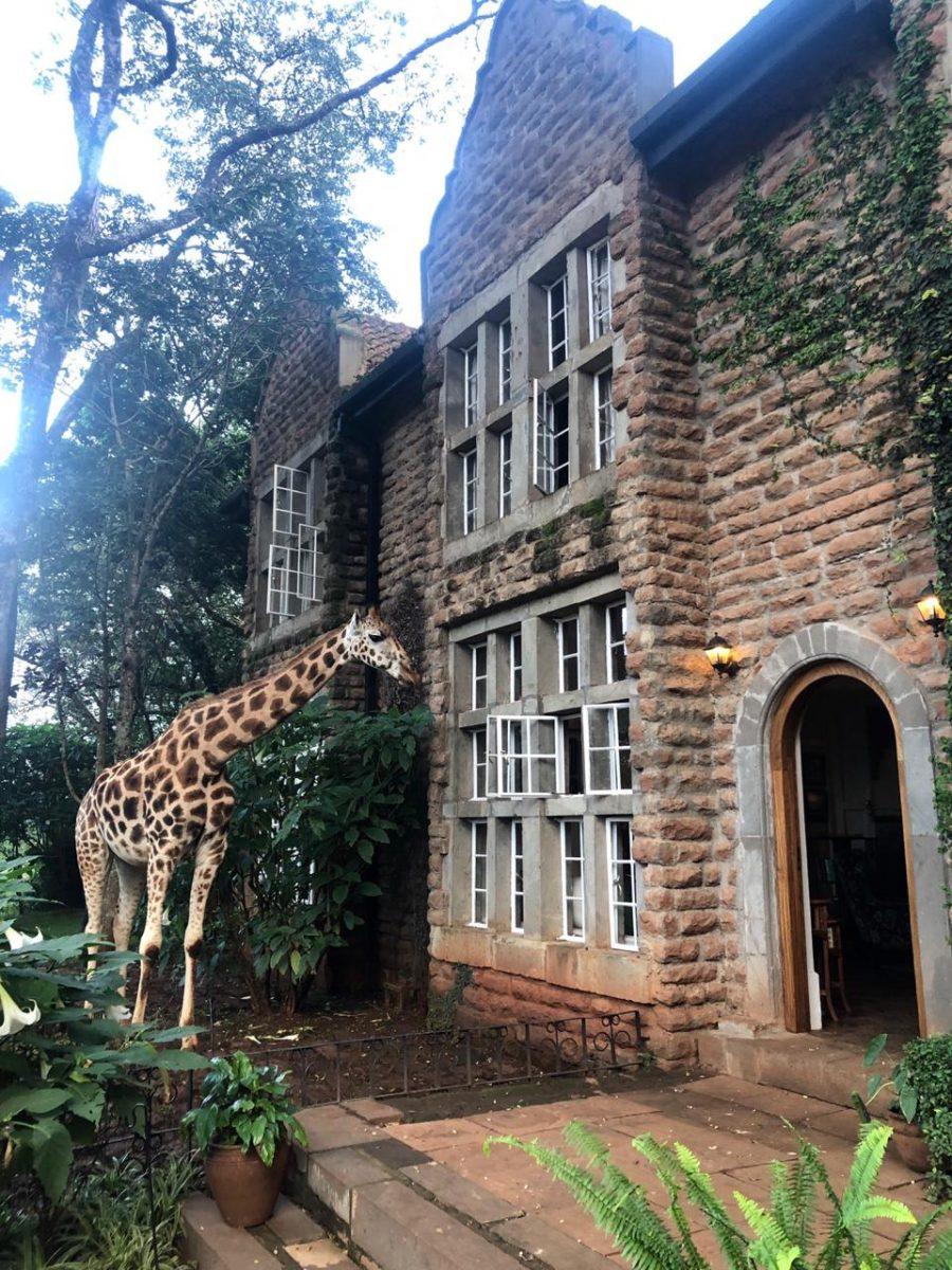 Hotel África Giraffe Manor